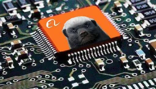 """阿里AI芯片来了 社会""""平头哥""""的软肋在哪里"""
