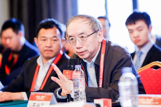 中国改革基金会国民经济研究所副所长王小鲁