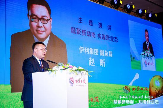 wellbet官方网站电脑版_新浪马术独家网络直播!上海环球马术冠军赛来袭