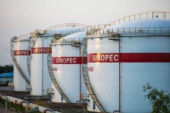 陈九霖:石油战略储备机不可失