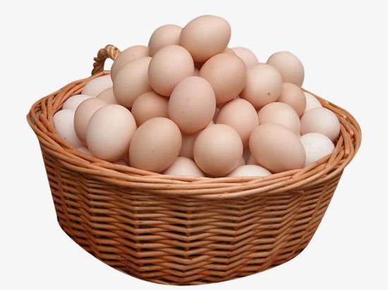 河北地区鸡蛋产业高峰会议暨下半年行情研讨会召开