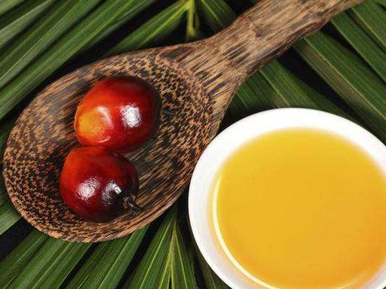 国信期货:9月17日库存下滑 棕榈油领涨
