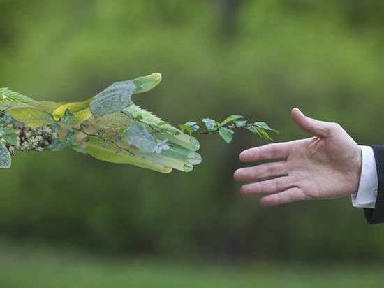 温宗国:准确把握新政导向,加快新时期塑料污染治理