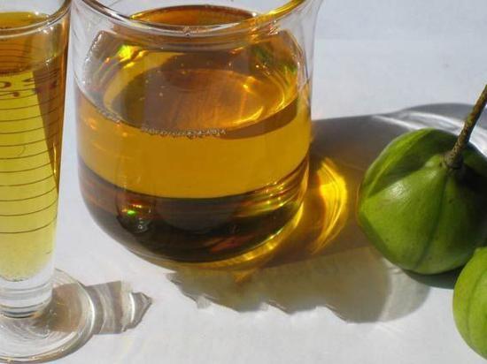 瑞达期货:资金偏好下 棕榈油继续保持强势
