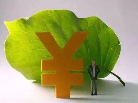 张雁云:绿色金融改革创新实践的启示