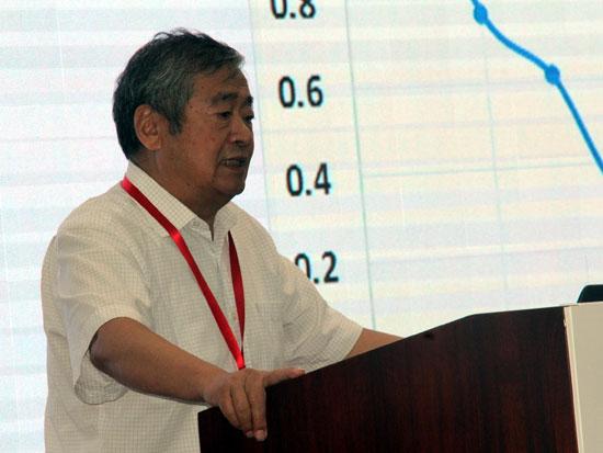 国家气候变化专家委员会副主任、清华大学原常务副校长何建坤