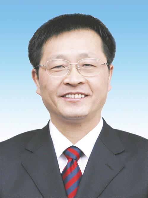 全国人大代表、中国铝业公司董事长、党组书记葛红林