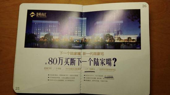 """业主提供的峰尚汇传单,写有""""LOFT微豪宅"""""""