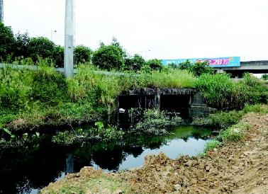 治理前的那考河摄影:陈思彤