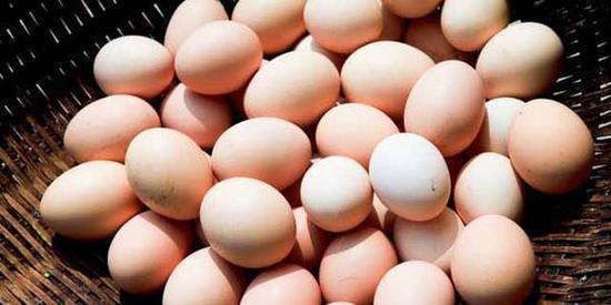 鸡蛋价格为何持续下跌?