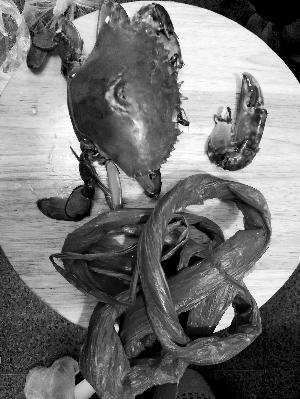 京深海鲜市场买来的膏蟹,解开湿塑料绳后,蟹腿已断。