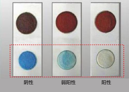 速测卡结果说明:卡片下方圆形显示蓝色为阴性(农残不超标);显浅蓝或不变色则为弱阳性或阳性(农残超标)。