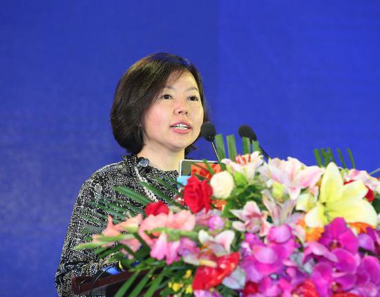 中国民生投资副总裁、中民未来董事长王晖