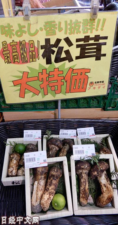 日媒:中国产松茸价格在日本大涨30% 采购成本增加