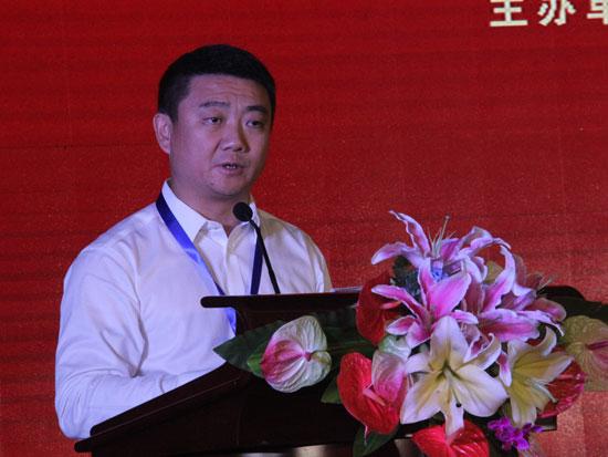 大商股份有限公司总裁王冰