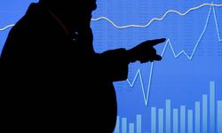 塞勒的理论适合解释中国市场