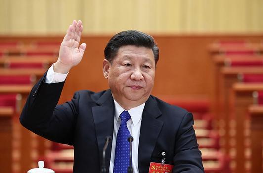中共第十九次全国代表大会主席团名单