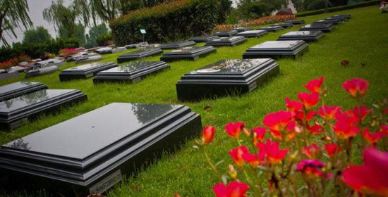 福寿园暴跌27%背后:经营性墓地单价10万 净利率达57%