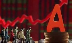 杨德龙:两大重磅利好刺激A股大幅上涨