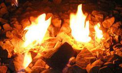 兽爷:春天里的一把火