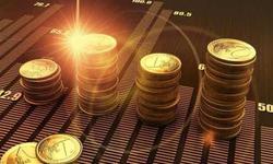 徐学明:商业银行要当好服务民营企业的主力军