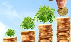 建立世界碳银行的必要性