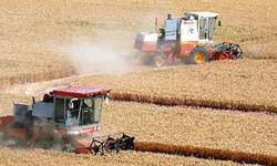 促进可持续发展的粮食问题