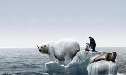"""林毅夫:经济发展与环境并非""""牺牲""""关系"""