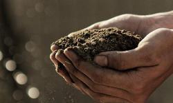 盘和林:以恰当的推动建立脱贫良性循环