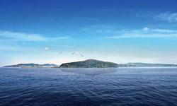 姜伯静:獐子岛,听,海哭的声音!