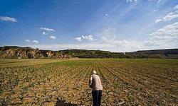周天勇:如何推进耕地的规模化生产和经营