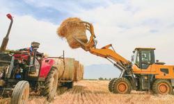 中小财险公司非车险业务发展前景探析