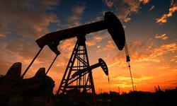 陈九霖:国际油价暴跌,国内油价为什么还是保持高位?