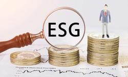 夏春:业绩领先与政策引导将驱动ESG投资持续发展