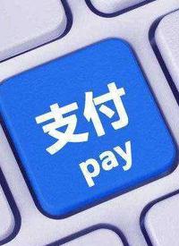 支付巨头的免费生意与付费服务 /