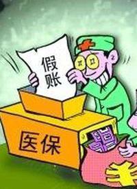 医疗机构骗保内幕 /