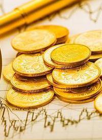 金融(rong)機構推個(ge)人信貸延期還款政策(ce) /