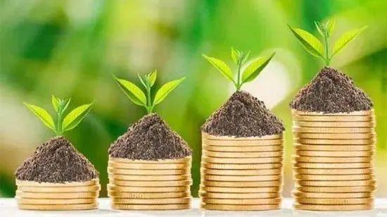 孙明春:金融机构应关注生物多样性风险