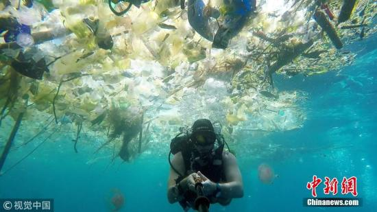 当地时间2018年3月3日,一名英国男子在巴厘岛海域潜水时拍下触目惊心的一幕。海洋中漂浮着大量塑料垃圾:瓶子、袋子、杯子、桶、吸管等等,鱼类及其他海洋生物都避之而不及。 图片来源:视觉中国