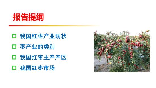 赌场她也在看片 - 传中国暂停游戏商业化申请提交:因等待审批游戏太多