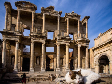 美国债市:国债上涨 土耳其危机助长避险买盘