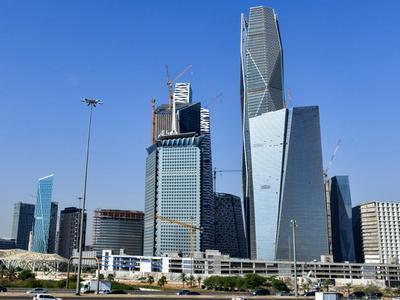 沙特上市金融机构首位女性高管为中东ESG发展助力