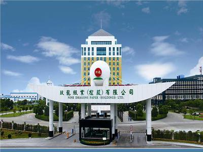 纸业股逆市造好 玖龙纸业涨近5%理文造纸升近3%