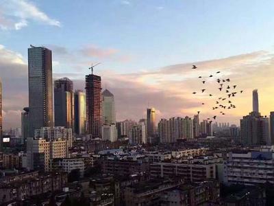 深圳一季度新房成交金额创历史新高 甲级写字楼吸纳量创首季新高