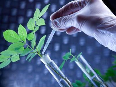 中国生物科技服务放量暴涨42% 最新市值17亿港元
