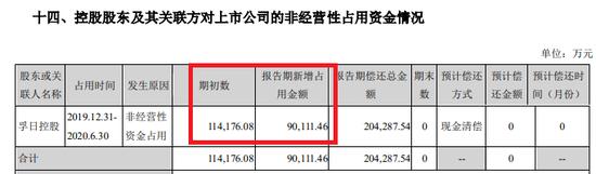 """孚日股份货币资金""""虚胖 """" 控股股东曾占用超20亿元"""