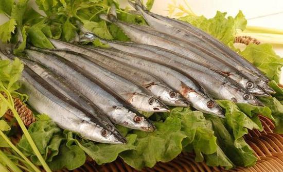 日本秋刀鱼价格同比飙升两倍 捕捞量减少8成