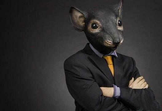 华夏基金暗语上演绝世老鼠仓
