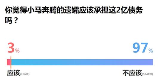 新浪民调:97%网友认为金燕不应该替夫偿还2亿巨债