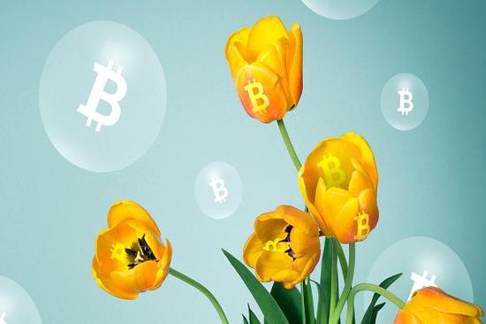 全球加密货币暴跌 2000亿美元市值化为乌有